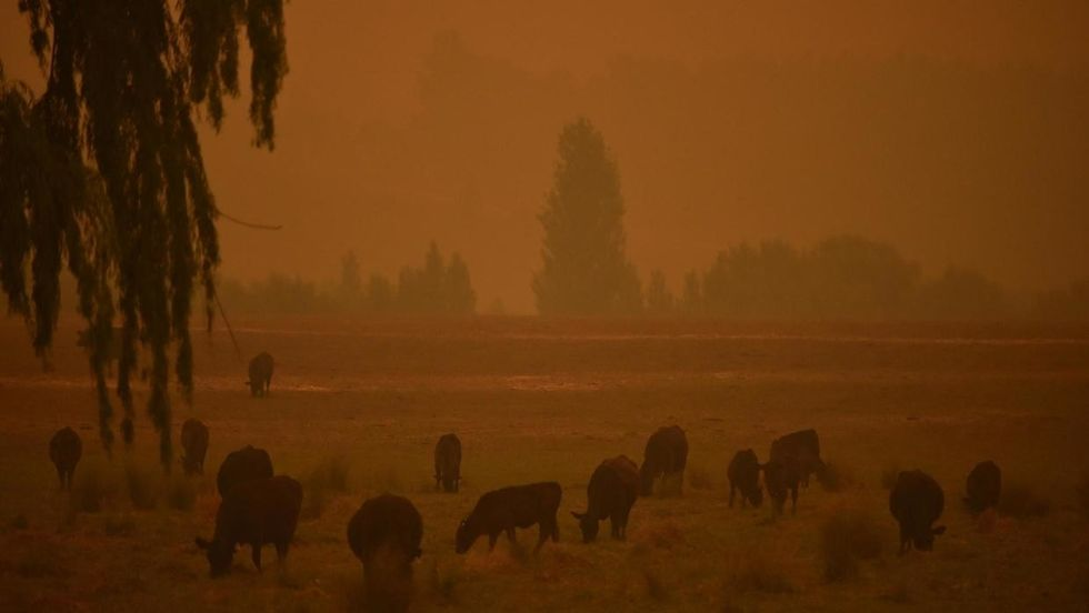 Dust storms and giant hail batter bushfire-weary Australia