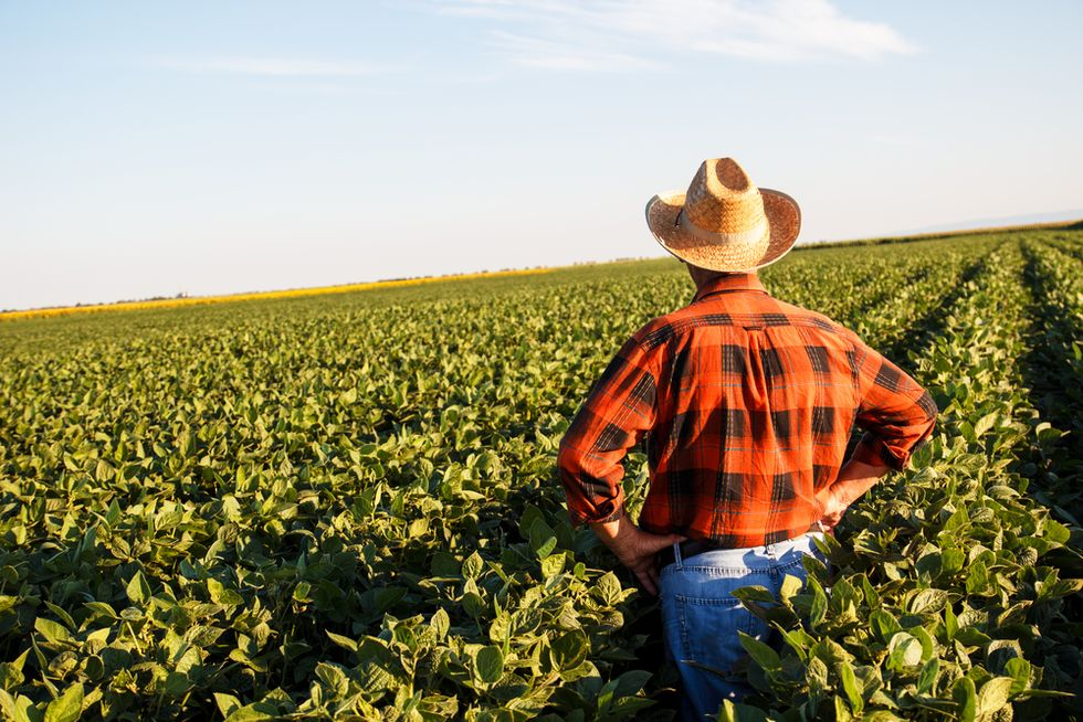 US farmers receive $7.7 billion in trade aid to date: USDA