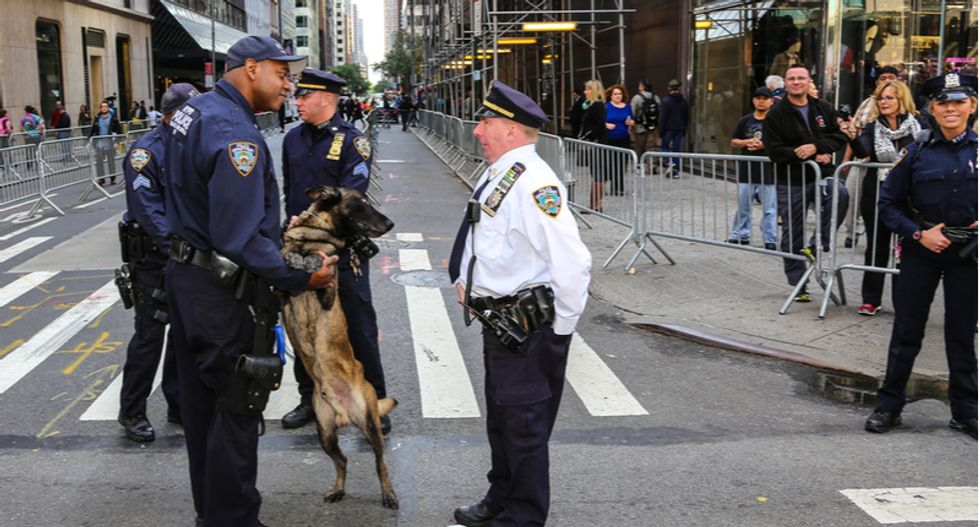 Trump seeks to completely eliminate the federal budget for bomb-sniffing dogs