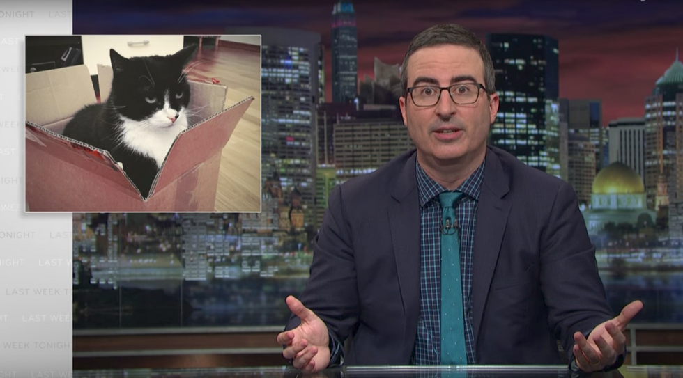 John Oliver: Trump surrogates lie instinctively like a cat can't help sitting in a box