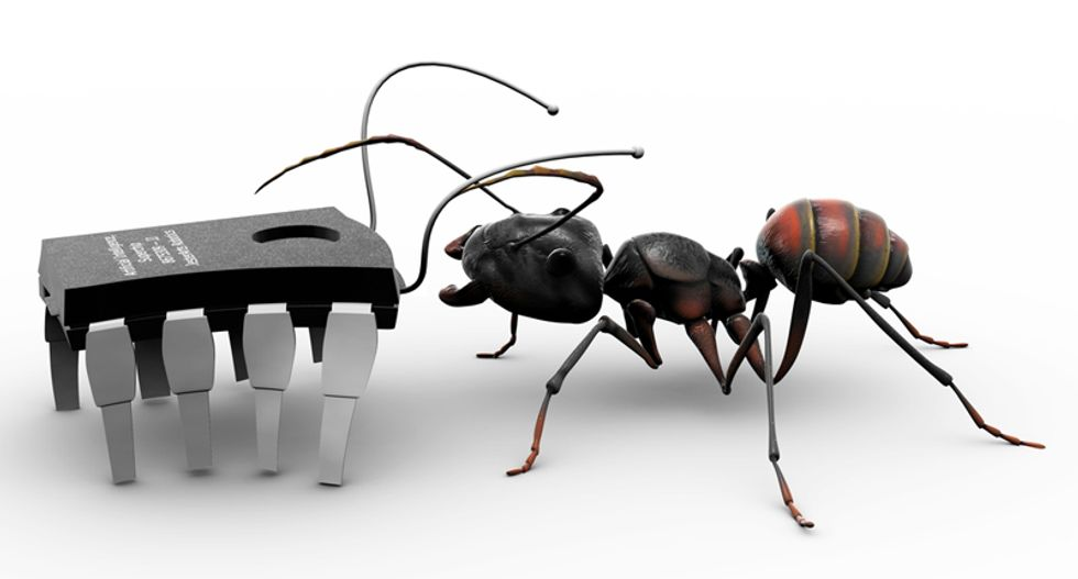 Our future workforce: Hand-sized 3D-printed robotic ants