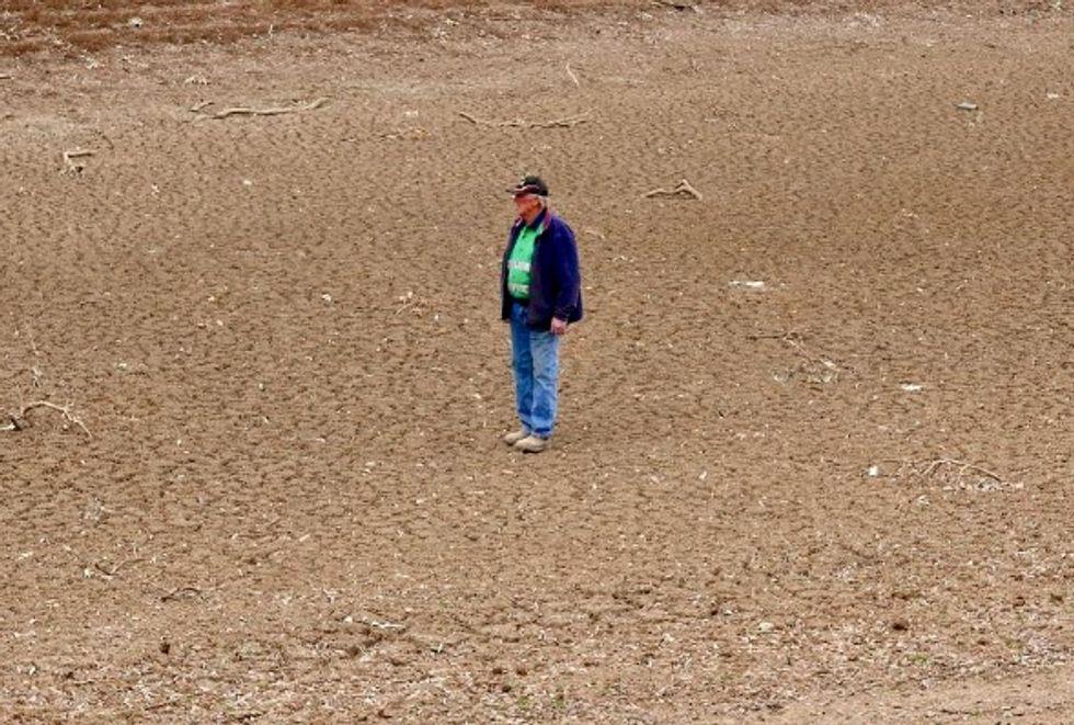 Despair for Australian farmers as drought kills livestock