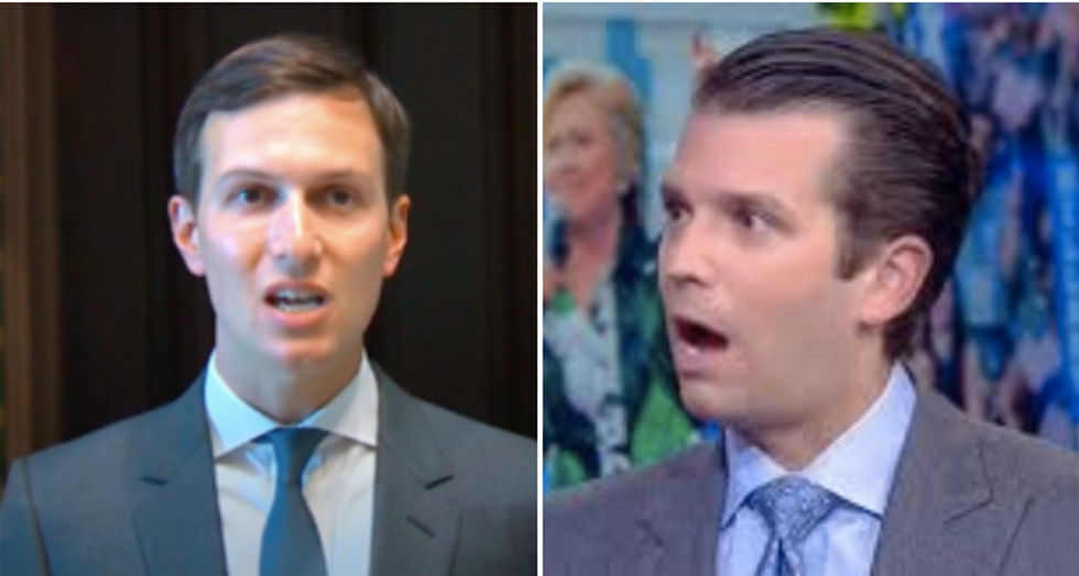 'Amateur hour at Trump Tower': MSNBC legal analyst mocks 'clickbait chumps' Jared and Don Jr