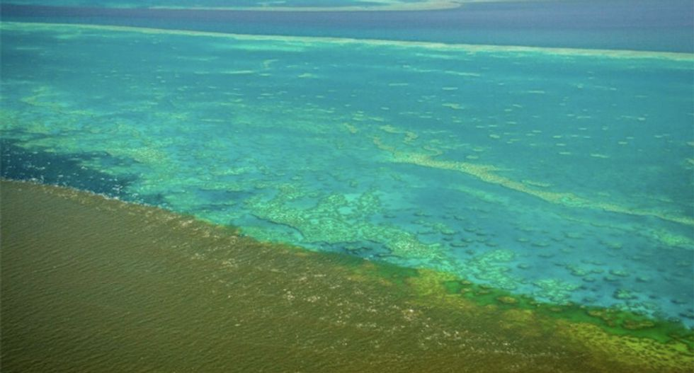 Australian flood water runoff could 'smother' the struggling Great Barrier Reef