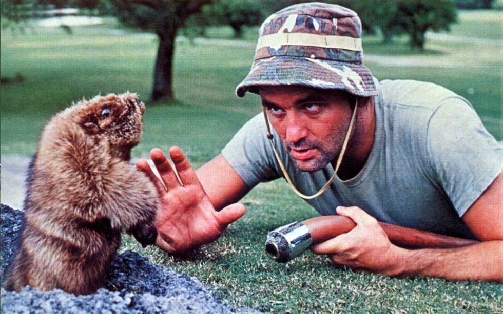 Trump golf course suffering from 'Caddyshack'-style varmint infestation: report