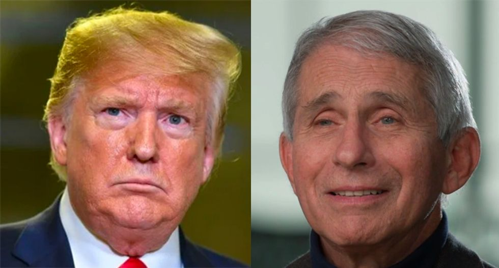 Trump is losing his war with Anthony Fauci -- and he can't do anything about it: columnist