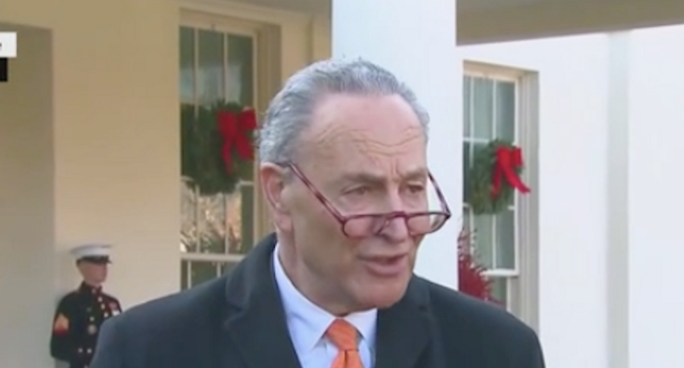 Watch Chuck Schumer stand on the White House lawn and destroy Trump for throwing a 'temper tantrum' on TV