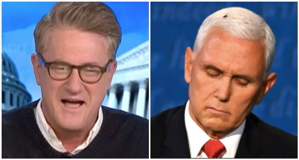 MSNBC's Morning Joe wonders how furious Trump is over Pence getting upstaged by a fly