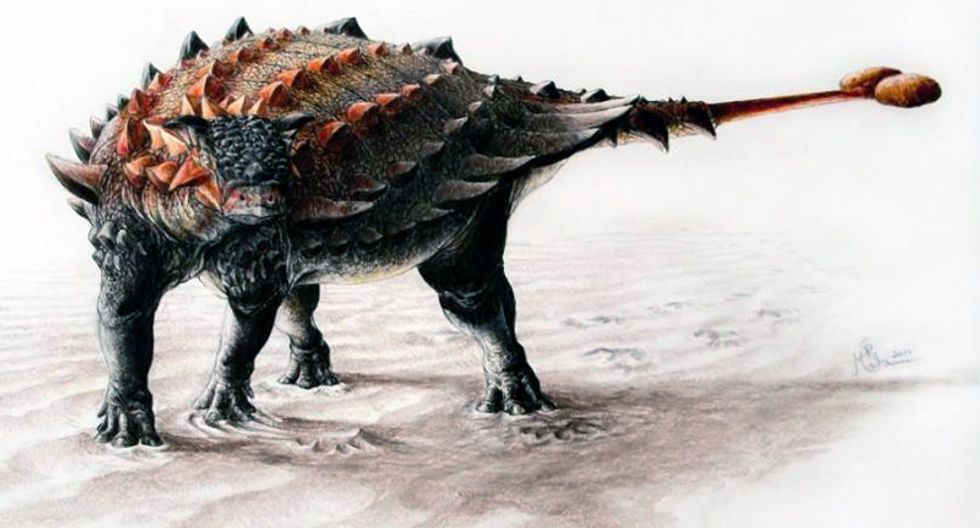 Did 'dark matter' or a star called Nemesis kill the dinosaurs?