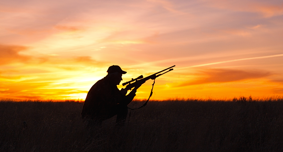 'Serial wildlife killers': Nevada hunters face trial over illegal poaching ring