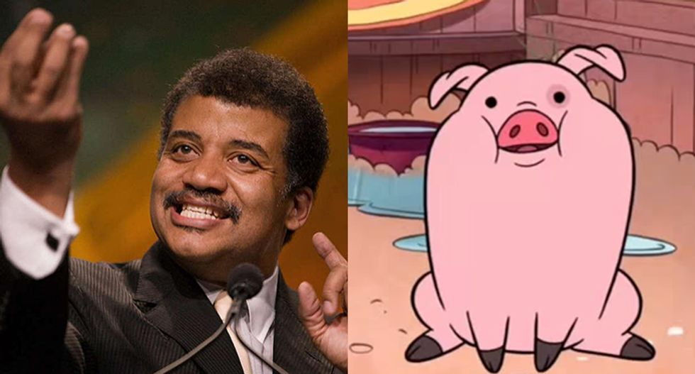 Neil deGrasse Tyson to play super-intelligent pig on Disney's 'Gravity Falls'