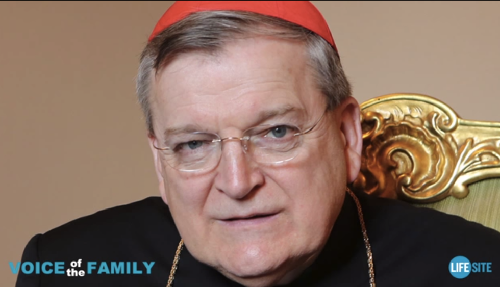 Controversial conservative cardinal of St. Louis says he was demoted by Pope Francis