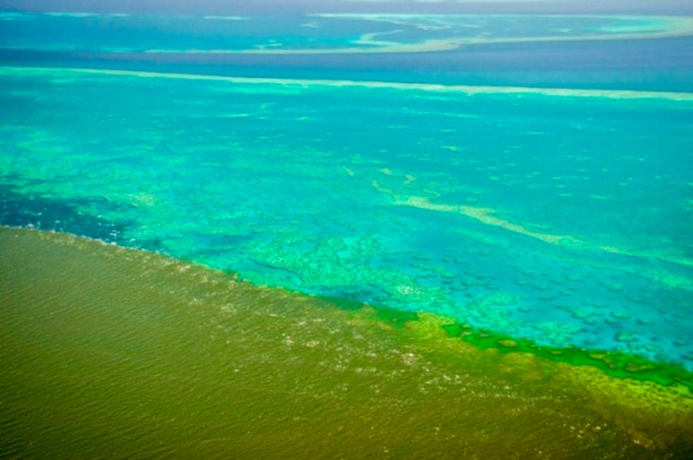 Fears flood water runoff could 'smother' Barrier Reef