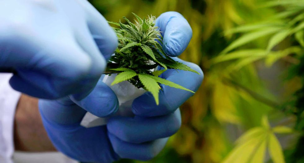 Would-be entrepreneurs flock to marijuana business conference in Manhattan