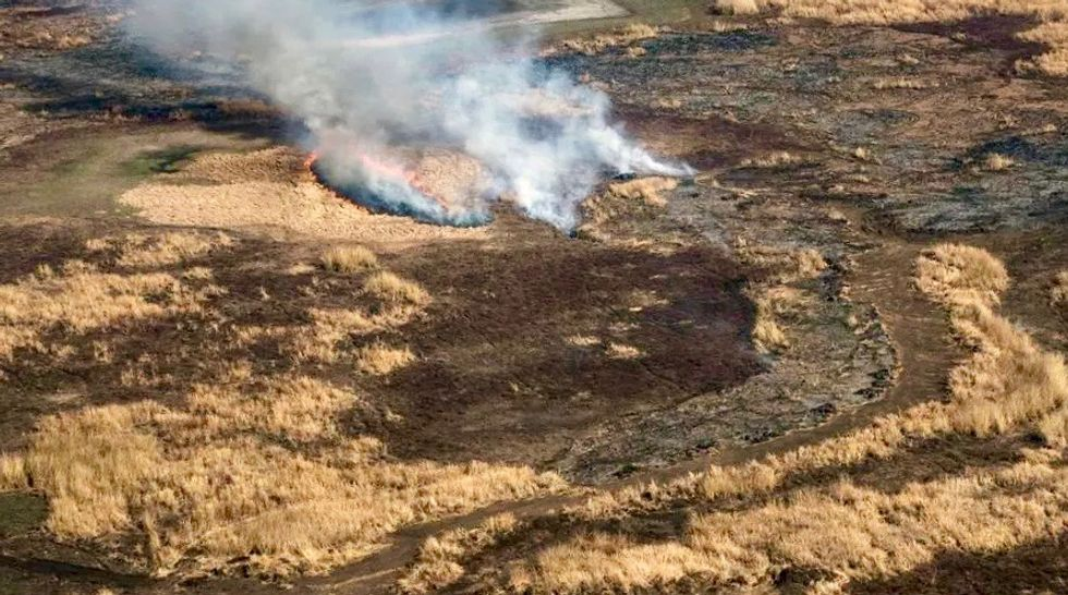 Argentine marshland threatened by worst fires in decades