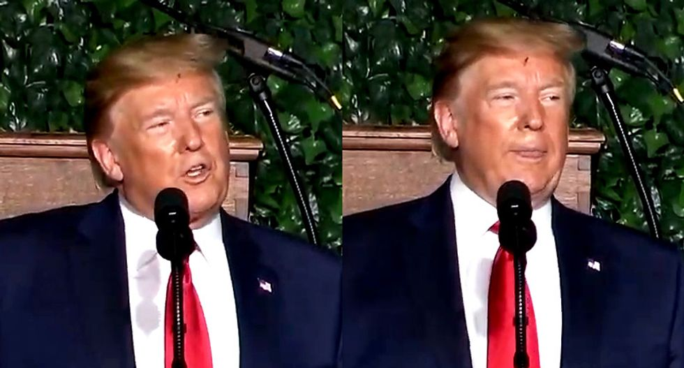 'He's the one who's infested': Internet dies of laughter after bug appears to get stuck in Trump's hair