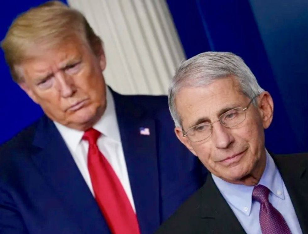 'I'd put the heads on pikes': Former Trump adviser calls for beheading of Fauci and FBI chief