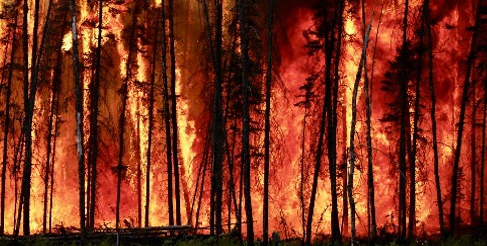 Increasing wildfires threaten to turn Northern Hemisphere's boreal forests from vital carbon stores into climate heaters