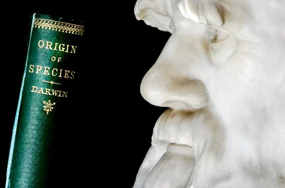 Charles Darwin notebooks 'stolen' from Cambridge University