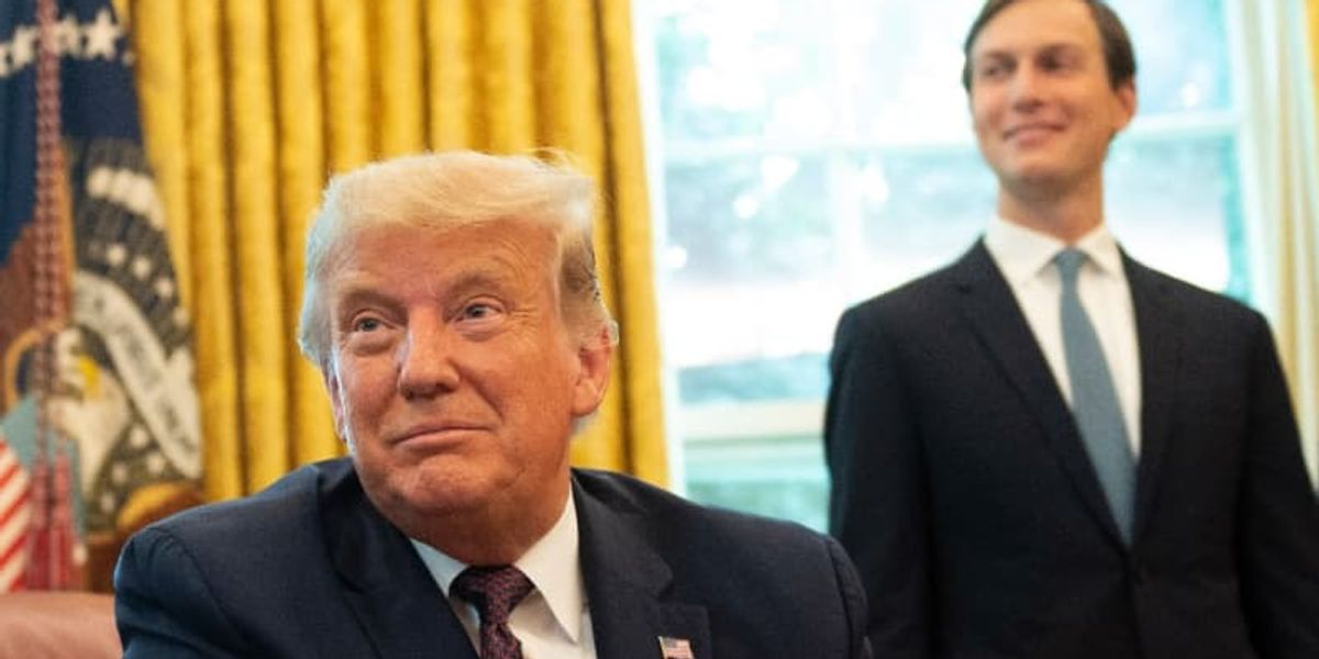 Trump raged at Kushner for 'killing him' on coronavirus: 'I want to do what Mexico does'
