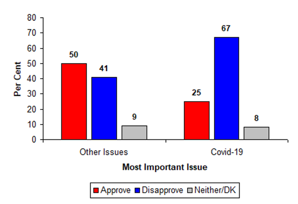 Graph showing Trump's approval ratings on various key issues