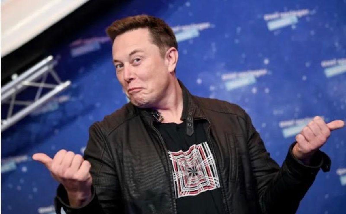 Elon Musk, a new Wall Street oracle?