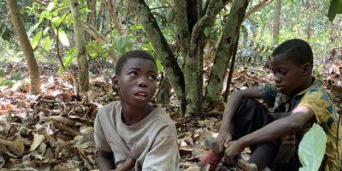 The 1.5 million child slaves behind your chocolate bar