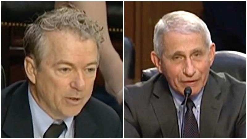 Anthony Fauci clashes with Rand Paul over masks during Senate committee hearing