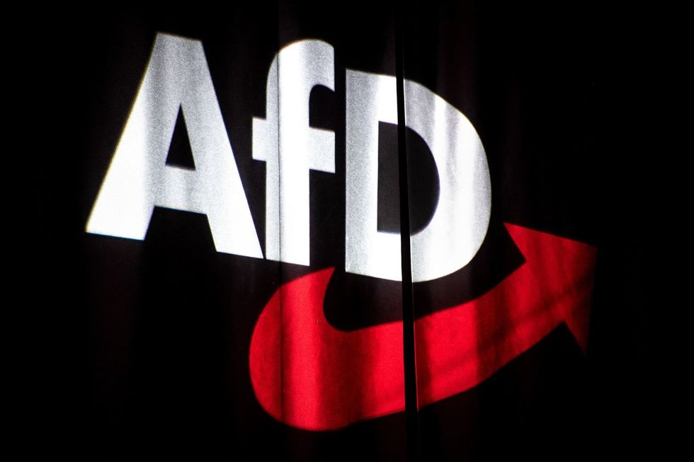 Germany's far-right AfD to name chancellor candidates