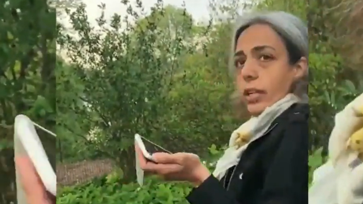 WATCH: Central Park woman falsely accuses Black women of 'beating' her in 911 call over phone charger dispute