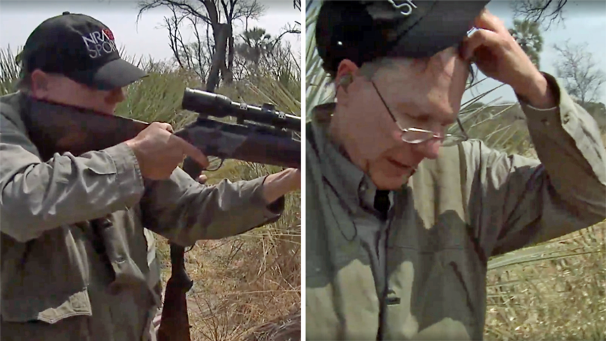 Shocking new video shows NRA's Wayne LaPierre repeatedly failing to kill an elephant