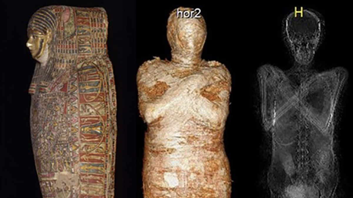 A mommy mummy: The first-ever mummified pregnant woman discovered by archeologists after mistaken identity