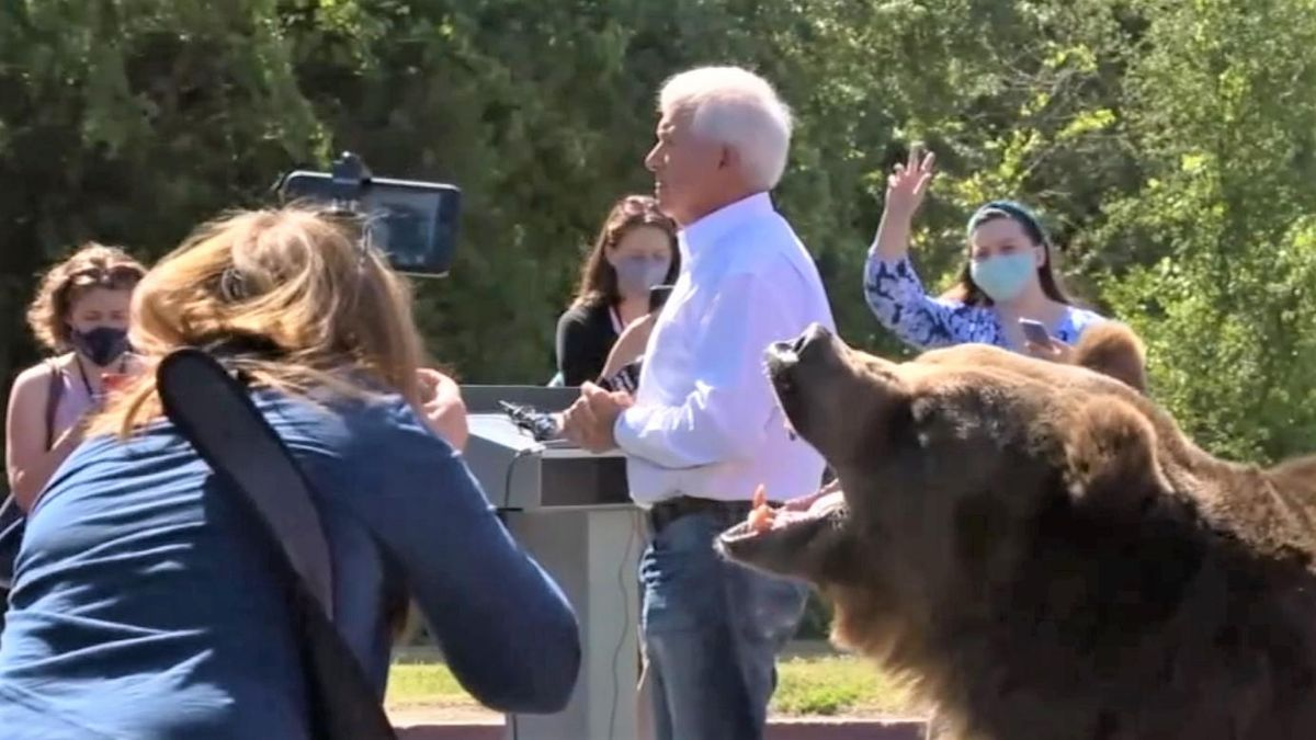 GOP candidate whines that media won't cover his ideas after campaign stunt involving a bear backfires