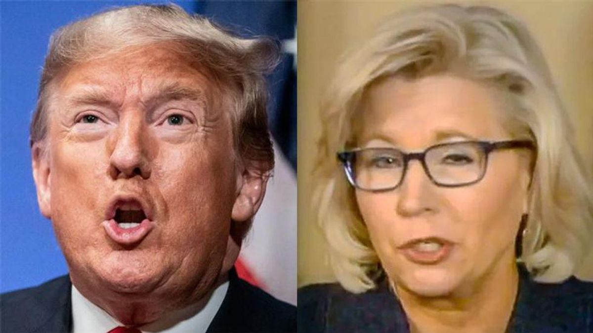 Liz Cheney: Trump 'has got to be investigated criminally' for inciting MAGA mob