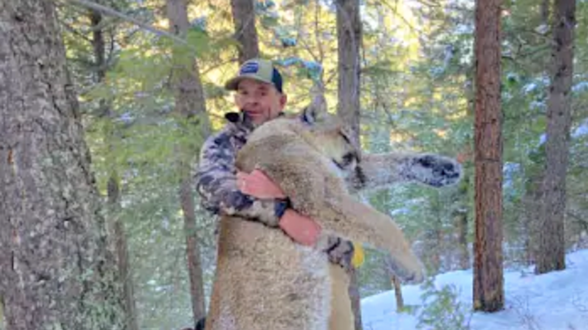 Capitol rioter banned from having firearms was just busted on gun charges after killing a mountain lion