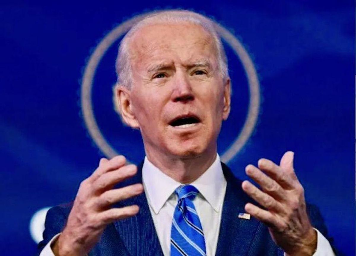 Right-wing publishers frustrated as demand for anti-Biden books is 'ice cold': report