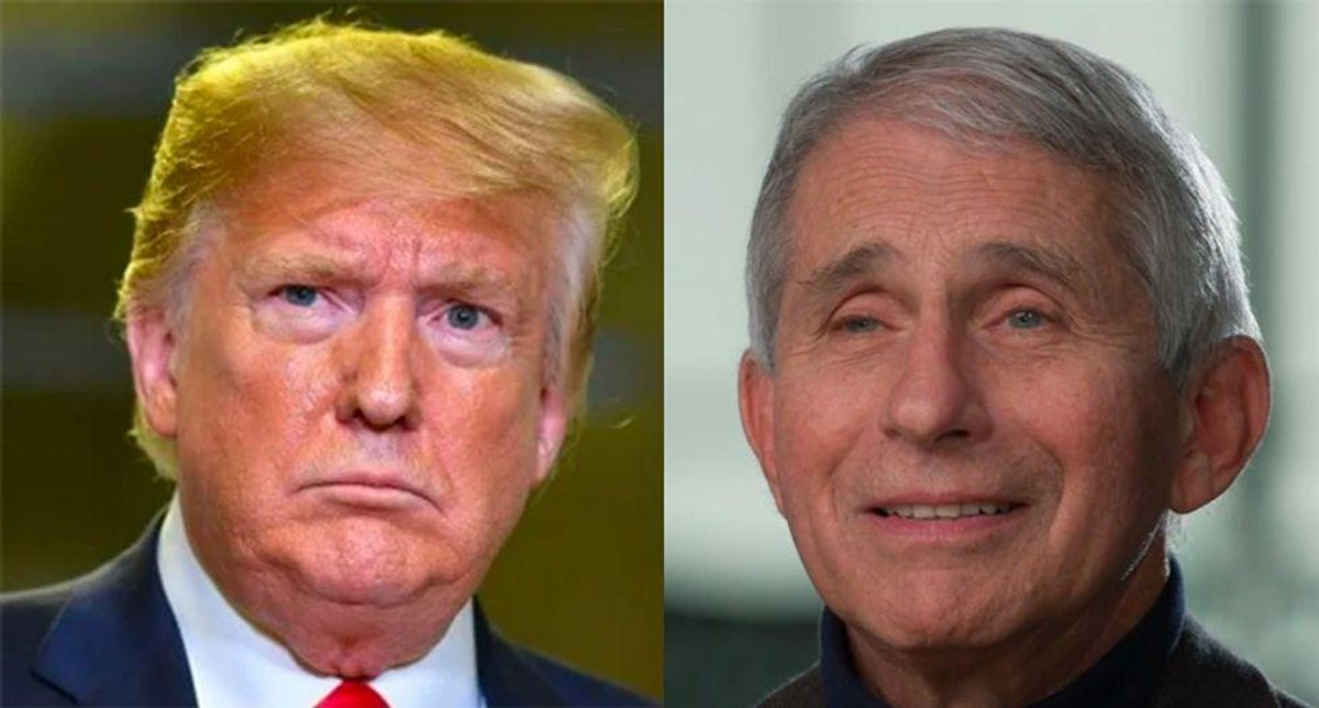 GOP strategist brutally sums up Trump's losing war with Dr. Fauci in nine simple words