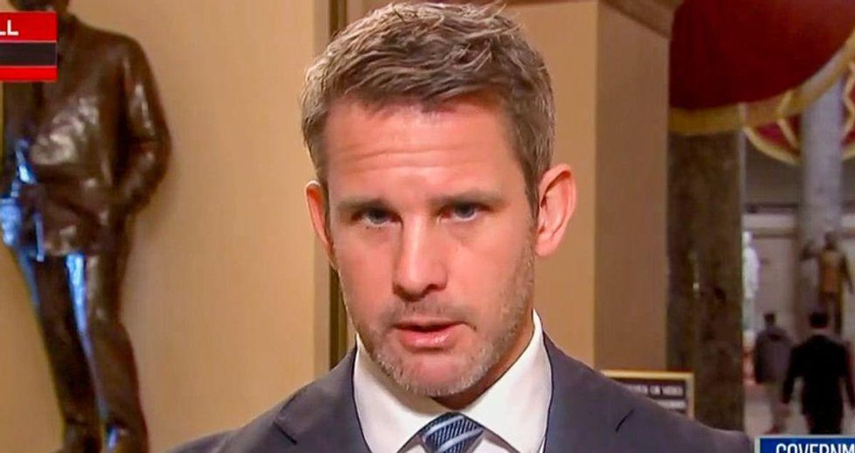 GOP's Kinzinger hammers 'cowering' Republican colleague who refused to shake DC cop's hand