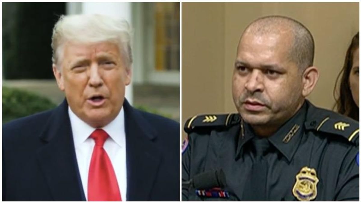 'He egged them on!' Capitol cop levels Trump for calling violent assaults 'hugs and kisses'