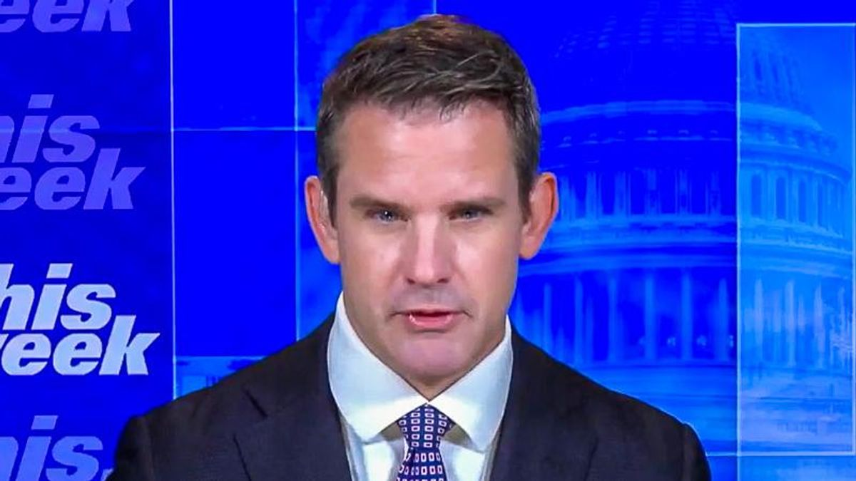 Adam Kinzinger pushes to subpoena Kevin McCarthy: 'What are you so afraid of?'