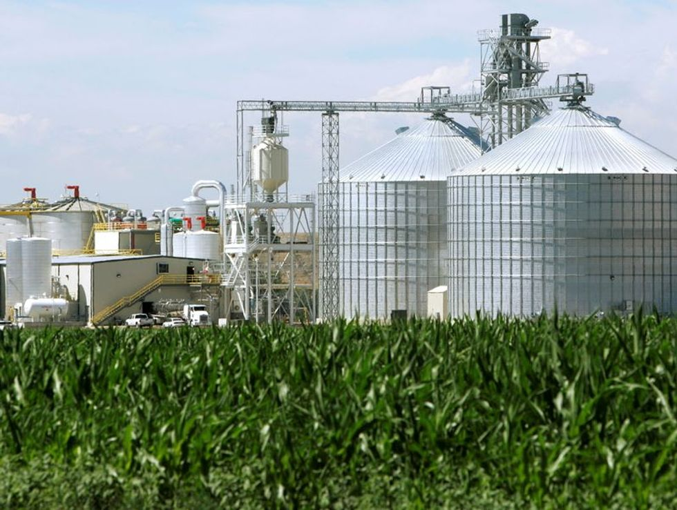 White House delays biofuel mandates due to political concerns: sources