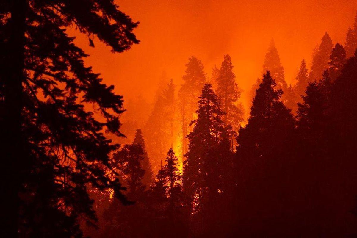 'Terrible proof': California fire documentary explores human failings behind blazes