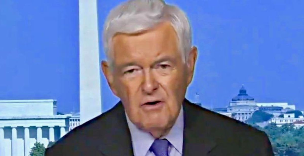 Newt Gingrich hurls racist rant: Democrats want to 'drown' US with immigrants 'to get rid of the rest of us'