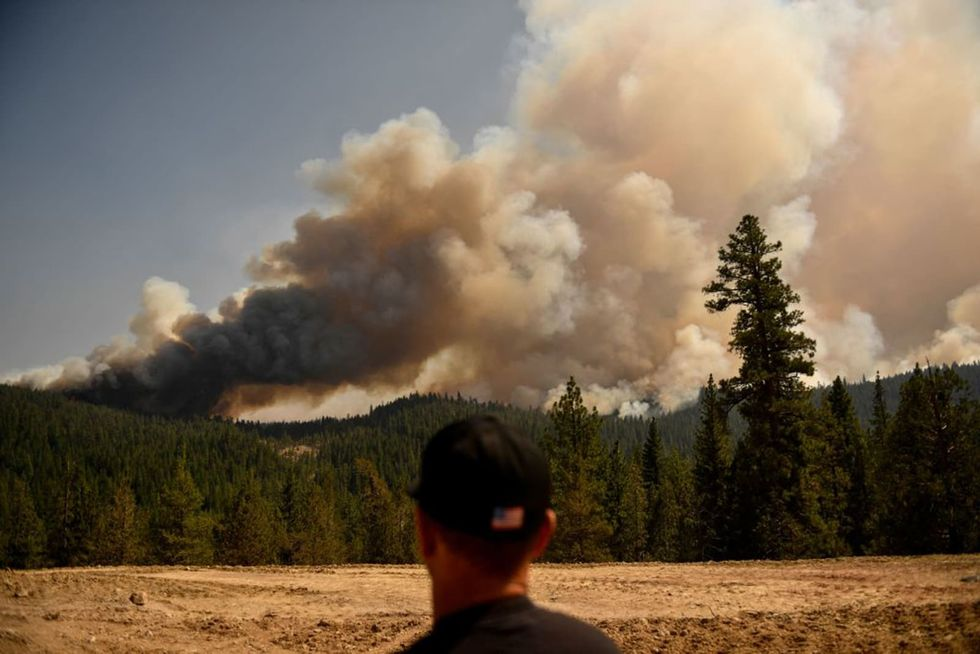 The feds own 57% of California forests. When will they finally act to reduce fire risks?