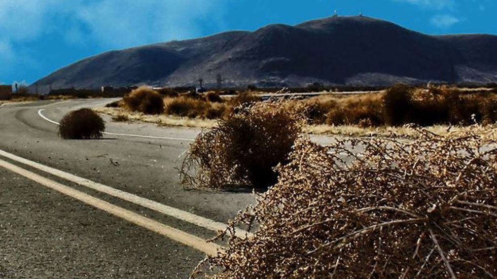 Horde of tumbleweeds a public safety issue in drought-stricken Colorado