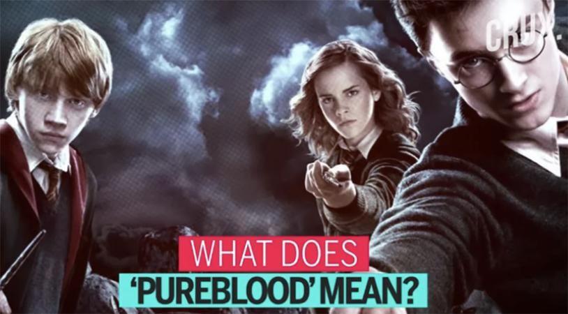 'Pureblood': Anti-vax TikTokers push new meme to promote COVID vaccine misinformation