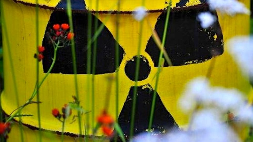 New report paints bleak future for nuclear power due to high operating costs