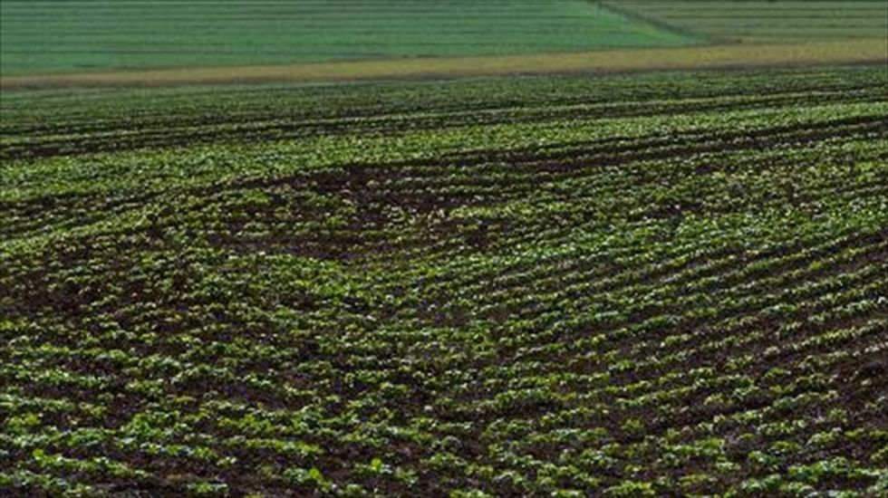 Scientists help Brazilian farmers adapt to climate change