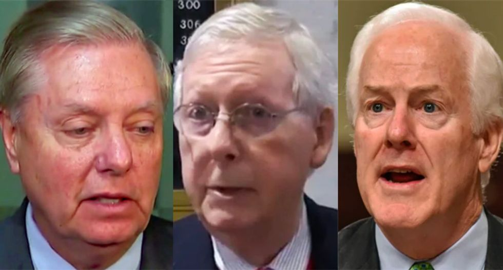 'Burn it all down': Conservative calls for purge of every one of Trump's Senate enablers