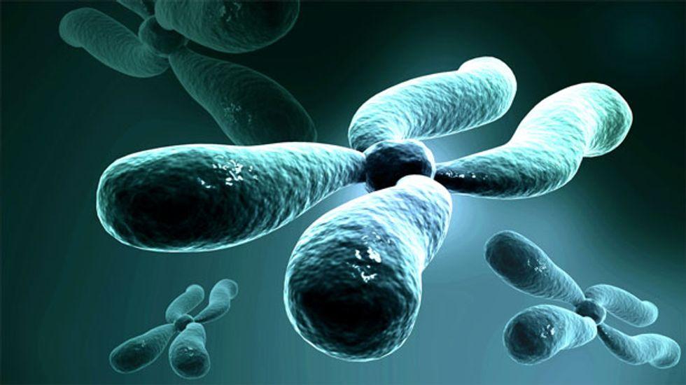Scientists create first man-made 'designer' chromosome
